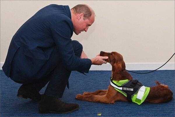 999 Day: герцог Кембриджский посетил сотрудников служб экстренной помощи в Белфасте