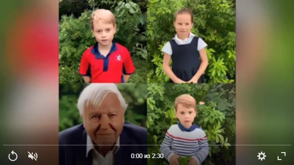 Кенсингтонский дворец показал на видео всех троих детей Уильяма и Кейт