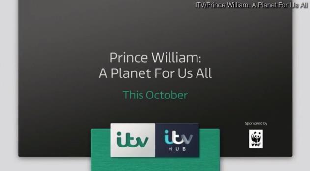 С тем ли братом Netflix заключил контракт: фильм «Принц Уильям: планета для всех нас» высоко оценили зрители