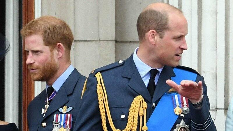 Принц Уильям учредил экологическую премию Earthshot. Пропасть между идеями и делами братьев все больше