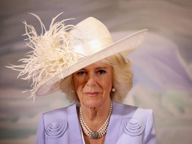 «Напряжение и гнев»: что не так с новым официальным портретом герцогини Камиллы