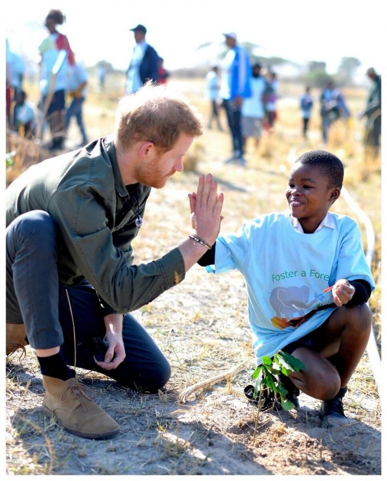 Четвертый день африканского тура: сольные мероприятия принца Гарри