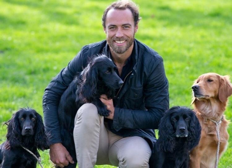 Брат Кейт Миддлтон продает своих шестерых щенков ради благотворительности